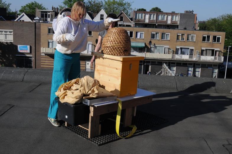de bijen worden in de kast geklopt