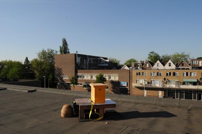 bijenkast op het dak