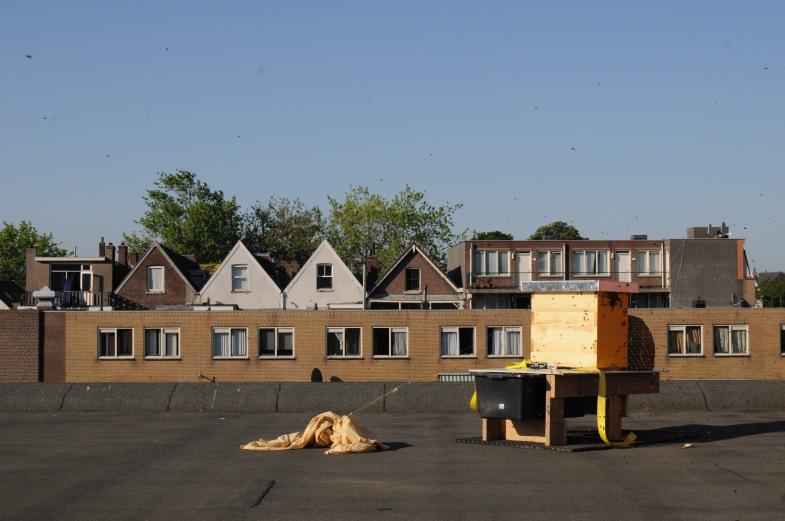 de bijenkast op het dak