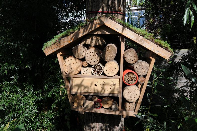 bijenhotel hangend aan een boom