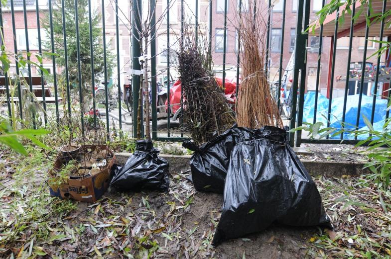 zakken wortelgoed voor de haag en enkele bomen